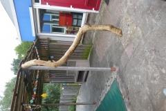 speelhuisje-pergola-hout